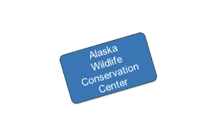 Alaska Wildlife Conservation Center - Family Pass, up to 5 people