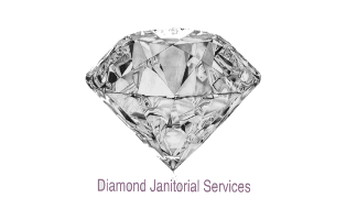 Diamond Janitorial Services - 2 month bi-weekly cleaning service